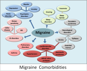 Conditions which often accompany migraine headaches, from 7mike5000 at Wikimedia