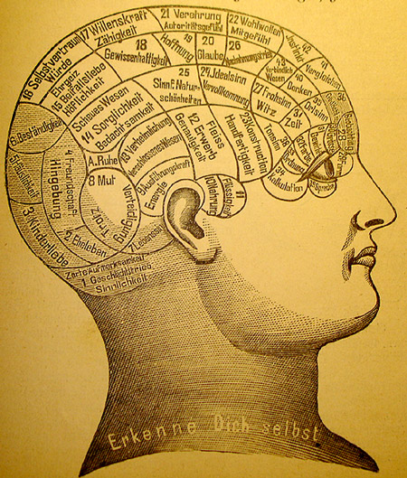 The Mind is Mapped Onto the Head in Phrenology (de Phrenologie (1894) by Friedrich Eduard Bilz (1842-1922): Das neue Naturheilverfahren (75. Jubiläumsausgabe), In the public domain, PD-US